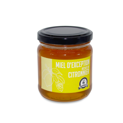 Honey of exception harvest of Citronnier tree Rucher du Chanteloup - artisanal